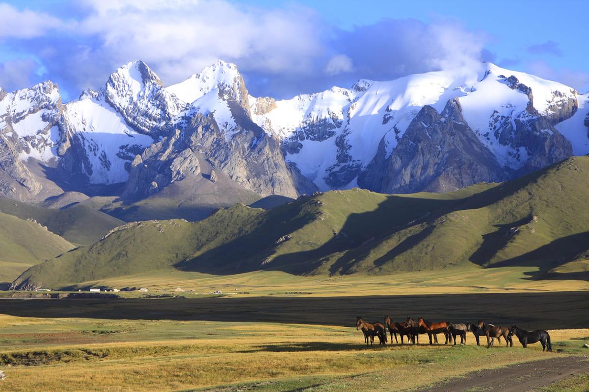 Kırgızistan 航空券